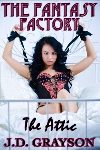 Fantasy Factory The Attic Book Cover